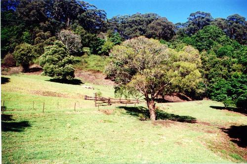 Jamberoo 2533 NSW