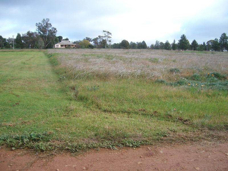 Property for sale Lot 176 Boree St Grong Grong NSW 2652